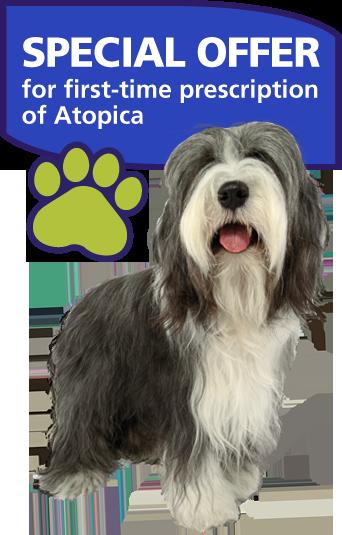 Cyclosporine 100mg For Dogs